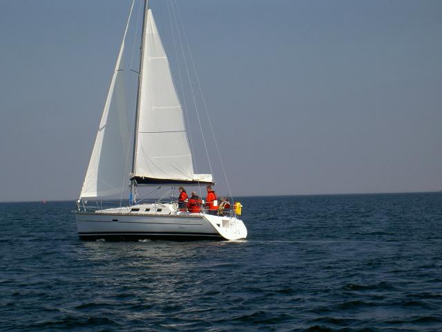 Duelighedsbevis i Sejlbåd